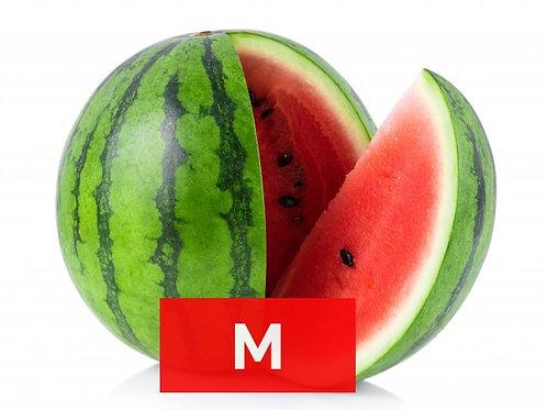 M - MAGUS ARBUUS, Itaalia (7kg minimum)
