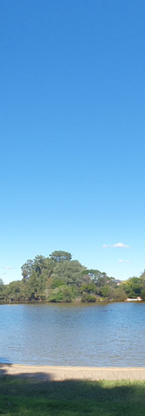 Wattle Grove Lake
