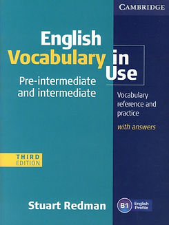 Cambridge-English-Vocabulary-In-Use-–-In