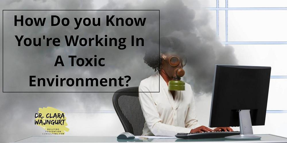 toxic, toxic work, toxic employee