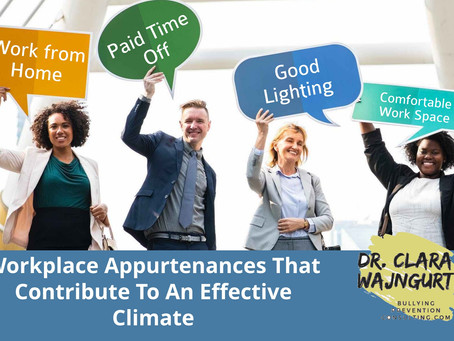 Workplace Appurtenances That Contribute To An Effective Climate