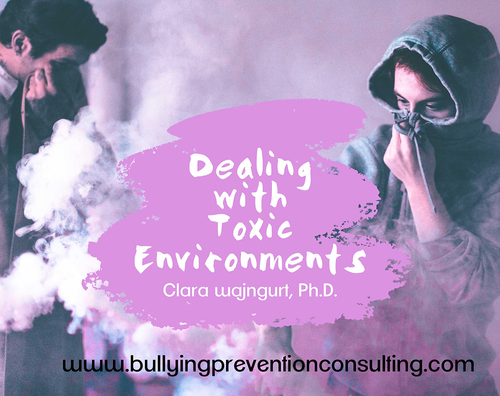 Toxic Workplace, Bullying, Workplace culture,