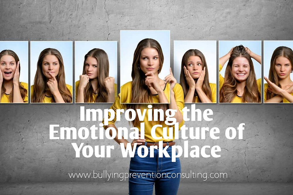 Emotional culture, workplace
