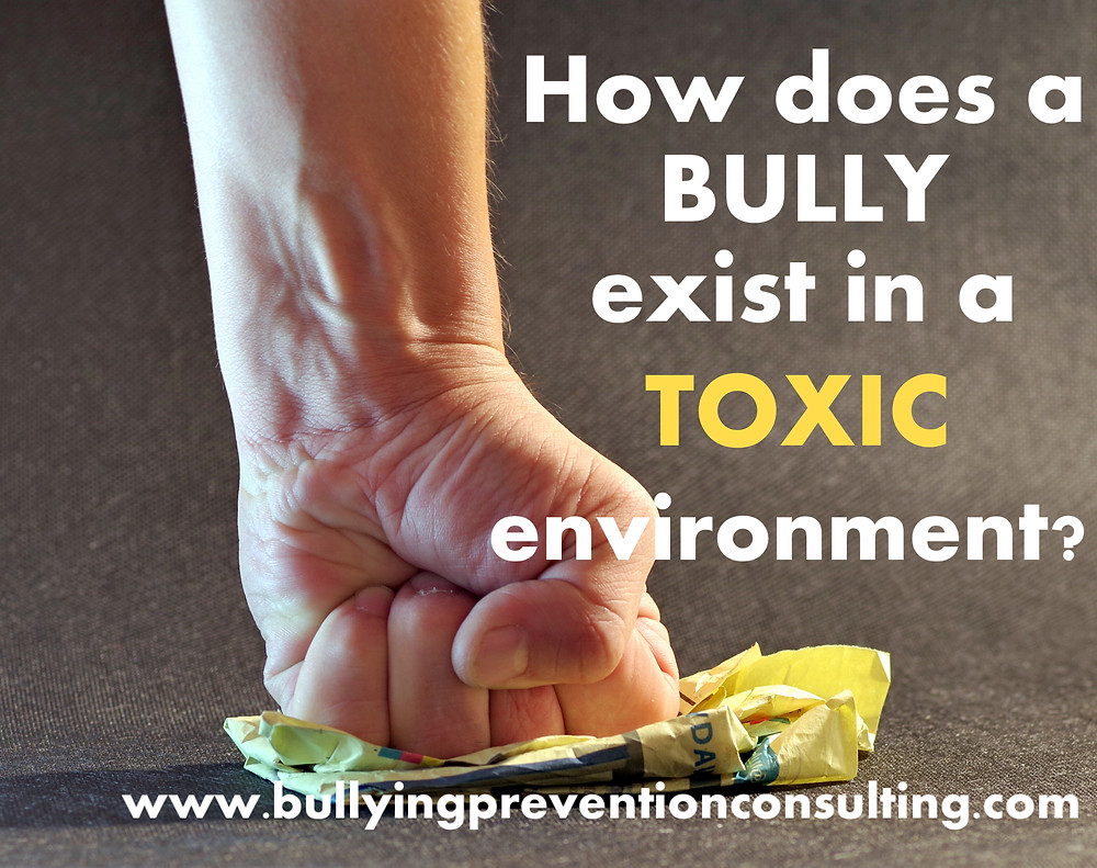 workplace bullying. toxic workplace, manipulation, inappropriate behavior