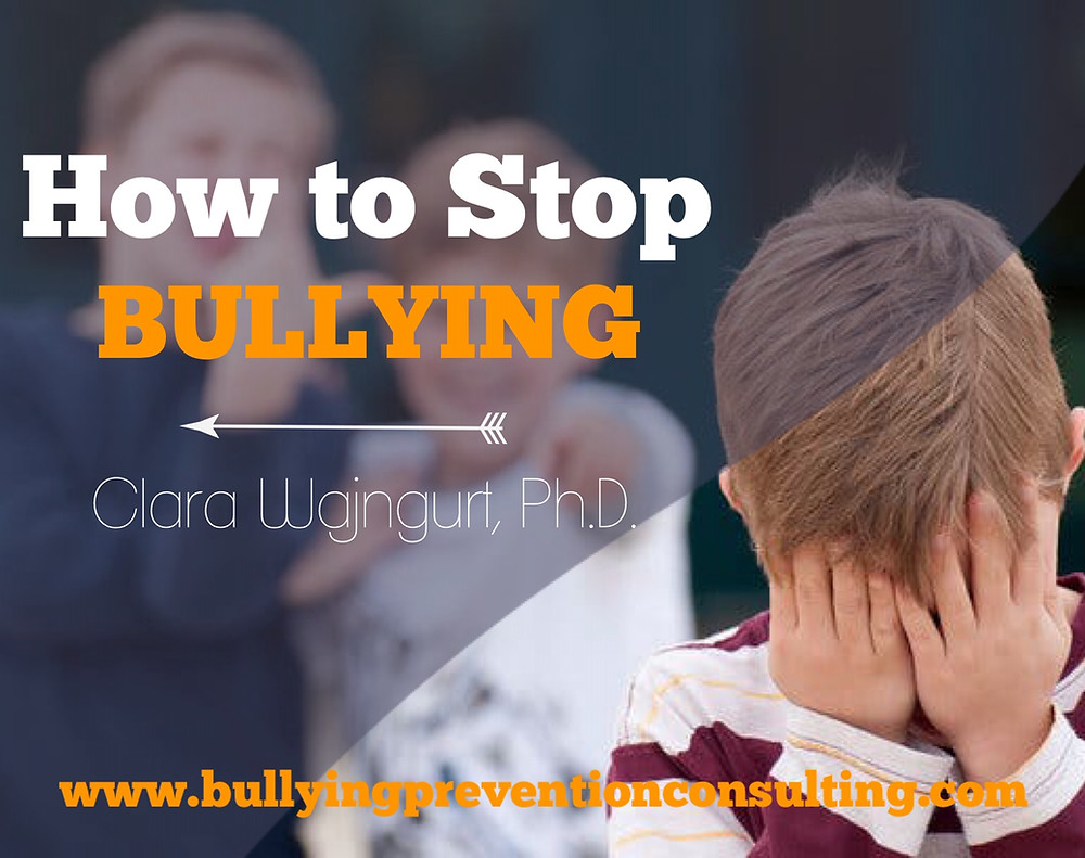bullying, warning signs, stop bullying, ideas to stop bullying, diversity, inclusion, workplace culture, incivility at work, workplace culture