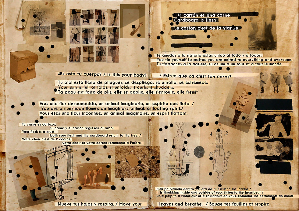 ProjectoCartónSantiago.jpg