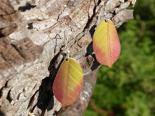 Autumn Cherry leaf earrings
