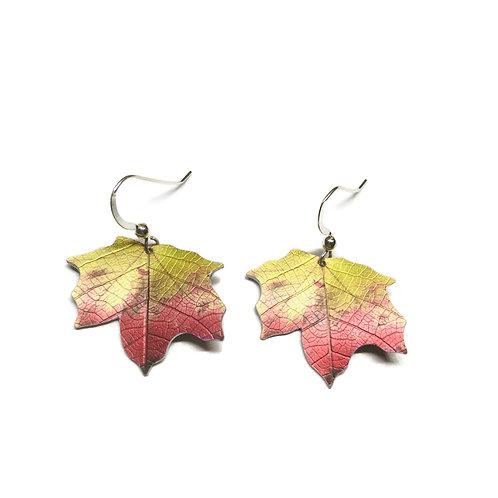 Ditton autumn Maple leaf earrings