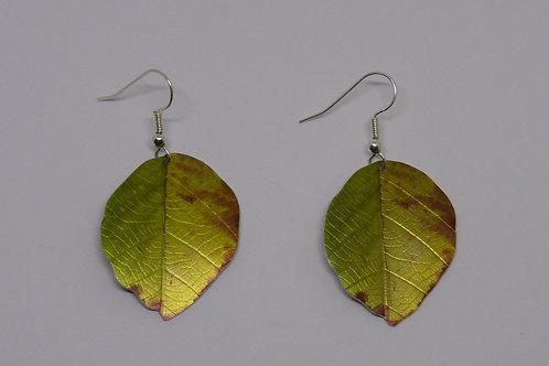 Autumn Beech leaf earrings