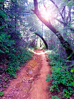 restorative hikes