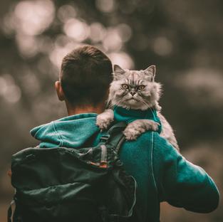 Catventuring is a Mutually Rewarding Partnership