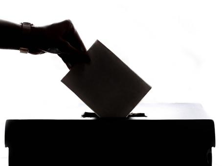 NVV publiceert lijst met vegan kandidaten Tweede Kamerverkiezingen