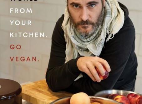 Dennis Alink: 'Joaquin Phoenix is oprecht bezorgd'