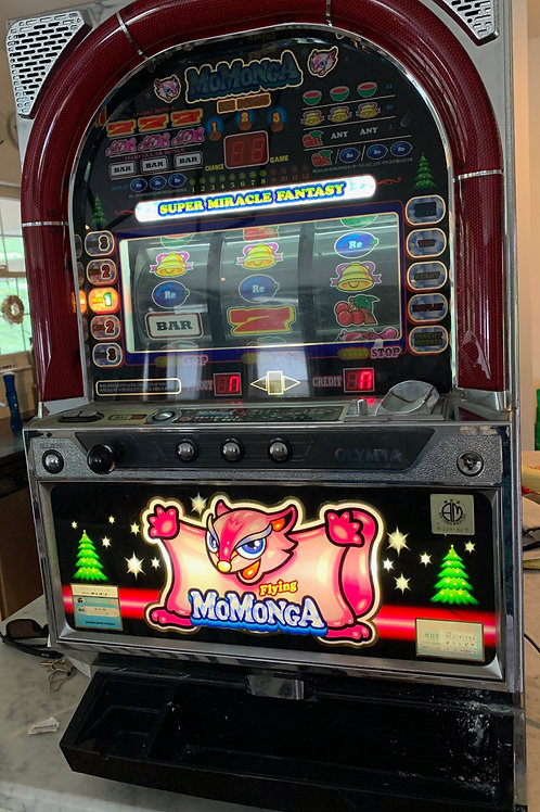 Working slot machine! How fun is that to have to keep family fun going
