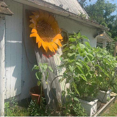 "48"" custom made sunflower!"