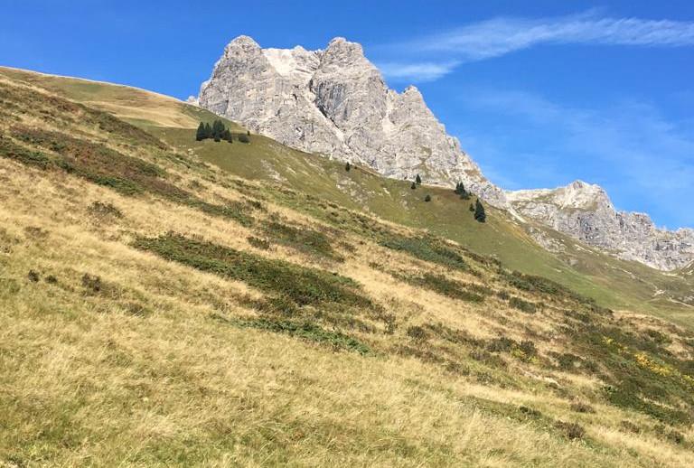 2019-09-27 Wanderung Lechtal (90).jpg