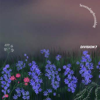Division 7 - Sensöndageftermiddag