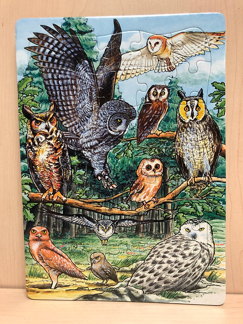North American Owls Puzzle