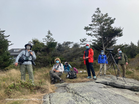 2020 Monhegan Fall Migration Weekend Tour Report