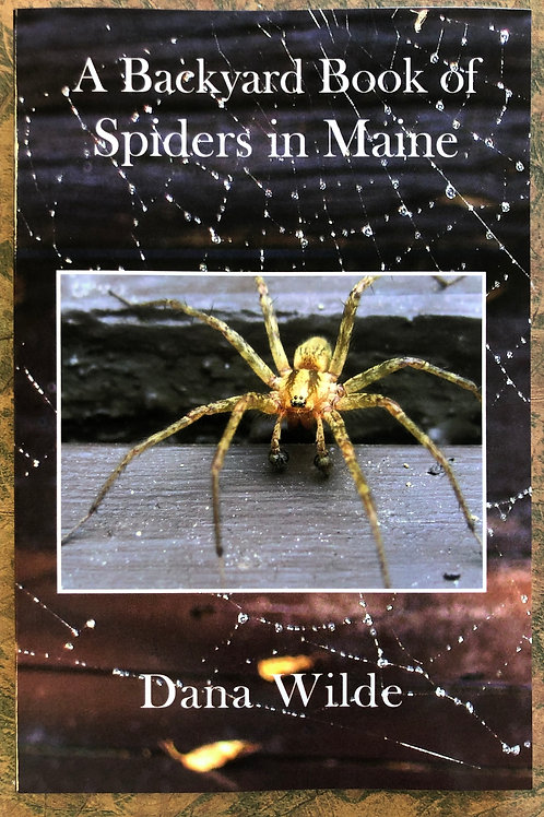 Backyard Book of Spiders in Maine