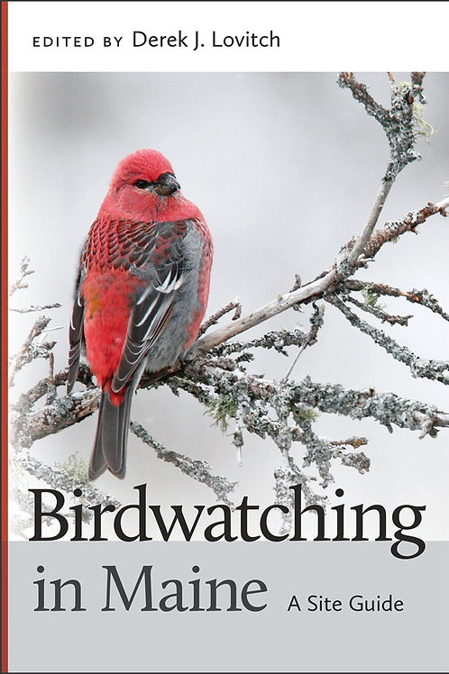 Birdwatching in Maine:A Site Guide
