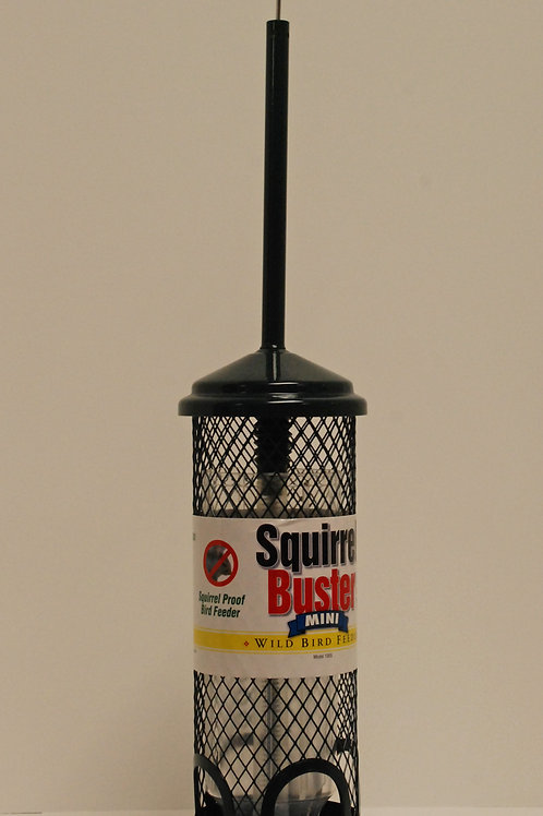 Squirrel Buster Standard Feeder