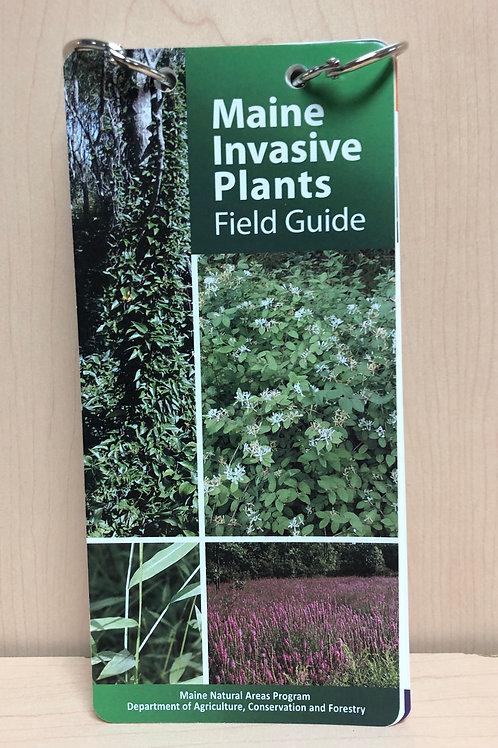Maine Invasive Plant Guide