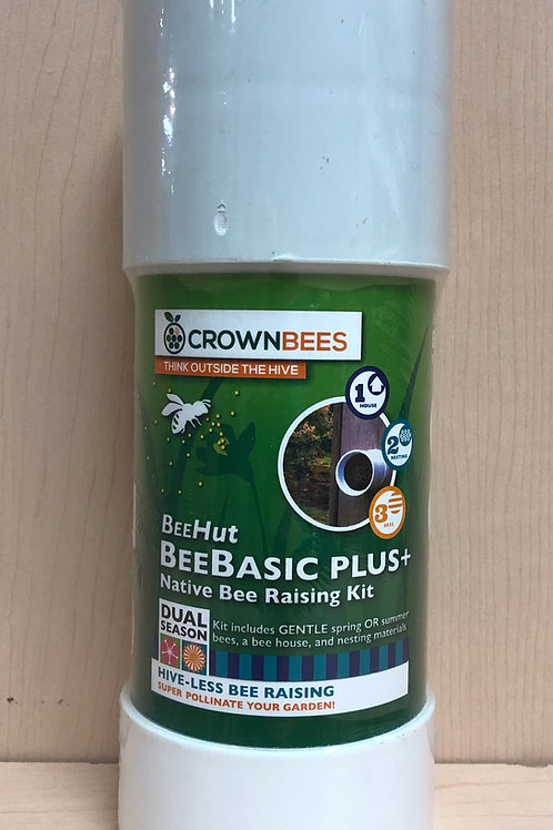 BeeBasic Plus Kit