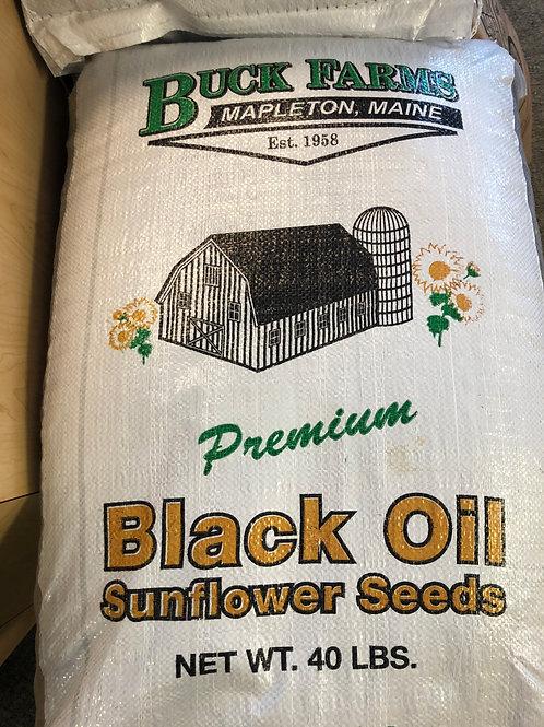 Maine Grown Black Oil Sunflower