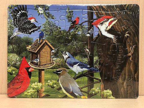 Around the Birdfeeder Puzzle