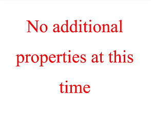 no additional properties.png