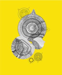 yellow_laban_v2-03.png