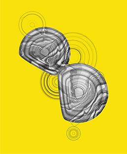 yellow_laban_v2-02.png