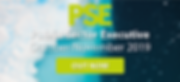 PSE cover.png