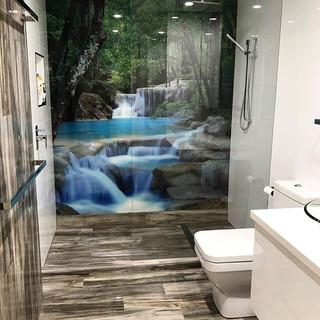 Frameless shower panel and rainforest im