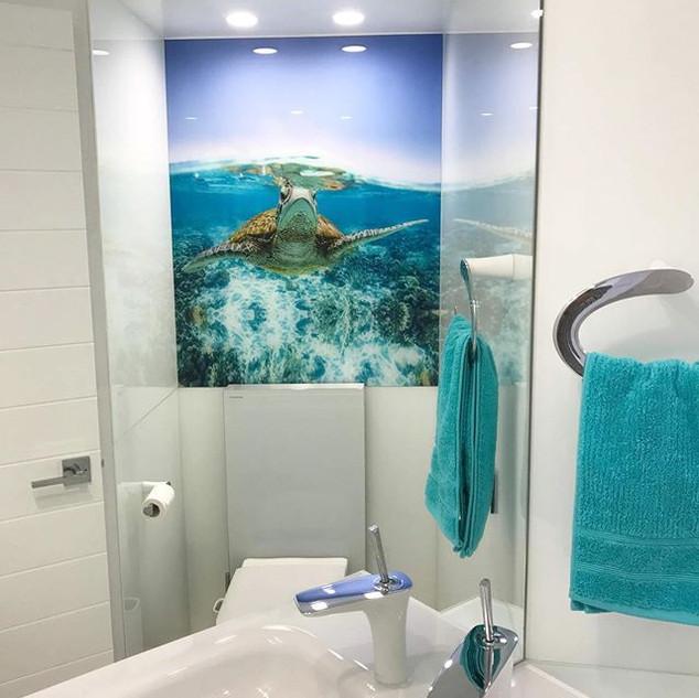 Polished mirror and beautiful turtle ima