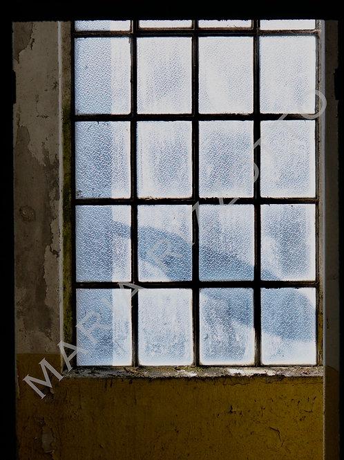 Window Window Window