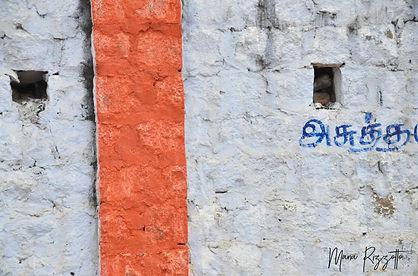 india wall orange.jpg