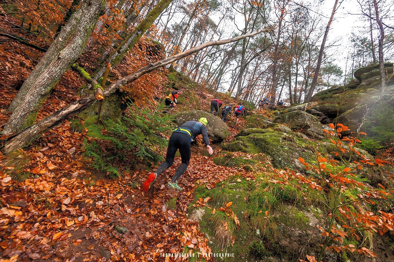 Trail-des-brosses-%C2%A9-Thomas-Devard-8