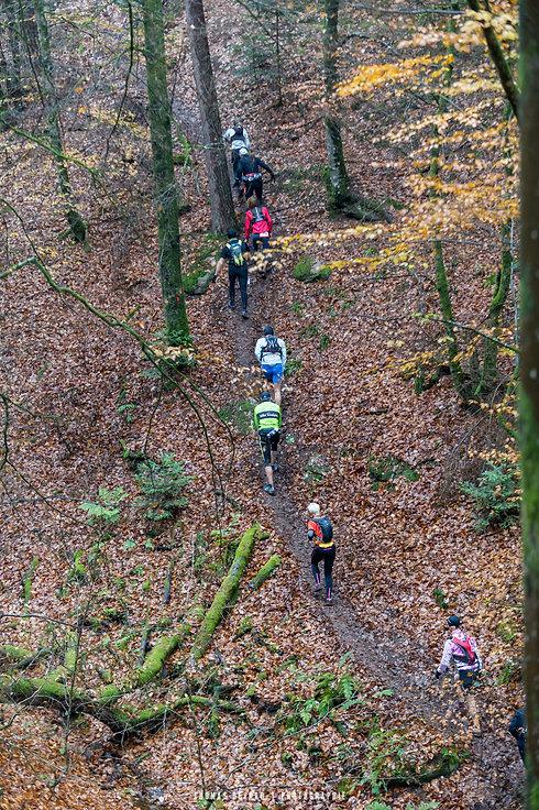 Trail-des-brosses-©-Thomas-Devard-654.jp