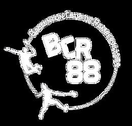 logo bcr blanc.png