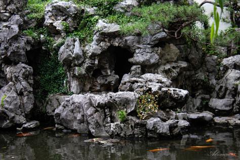 YuYuan Gardens 6