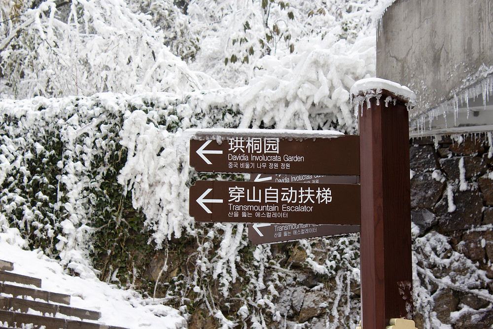 Tianmen Mountain Area