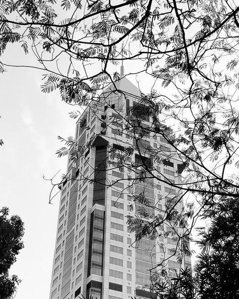 Architecture_BNW