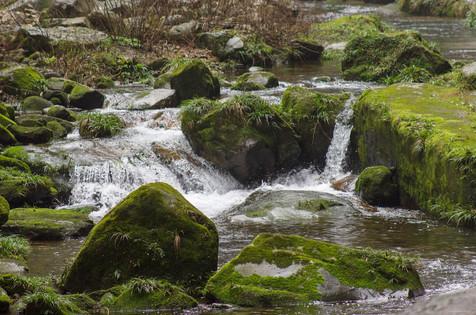 Zhangjiajie National Forest Park_ Streams