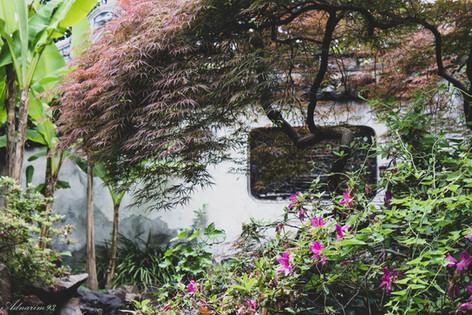 YuYuan Gardens 17