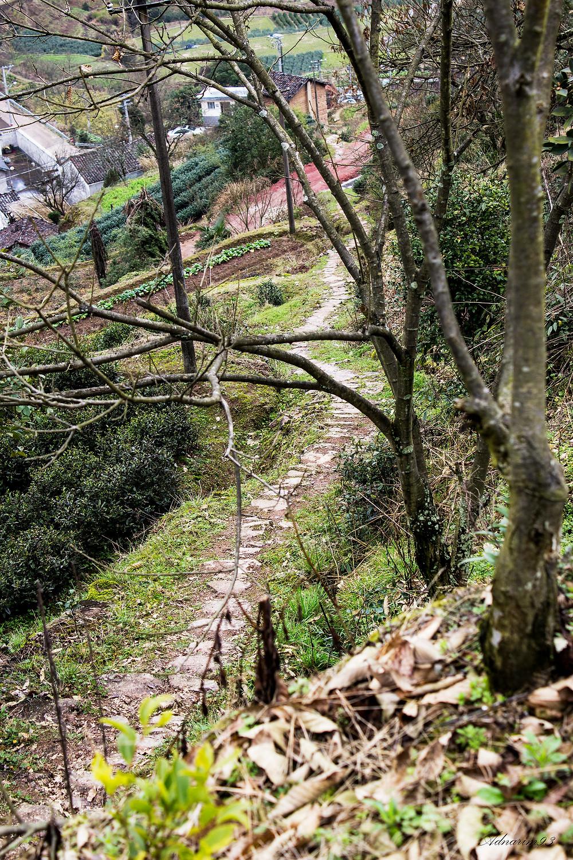 Farming trail in Wuyi, China