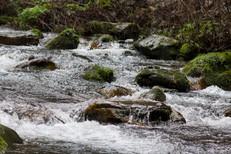 Zhangjiajie National Forest Park_Stream