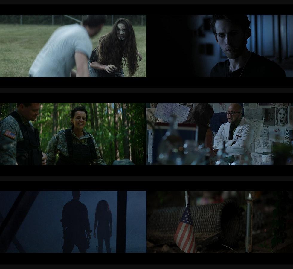 Takeover Film Panel B.jpg
