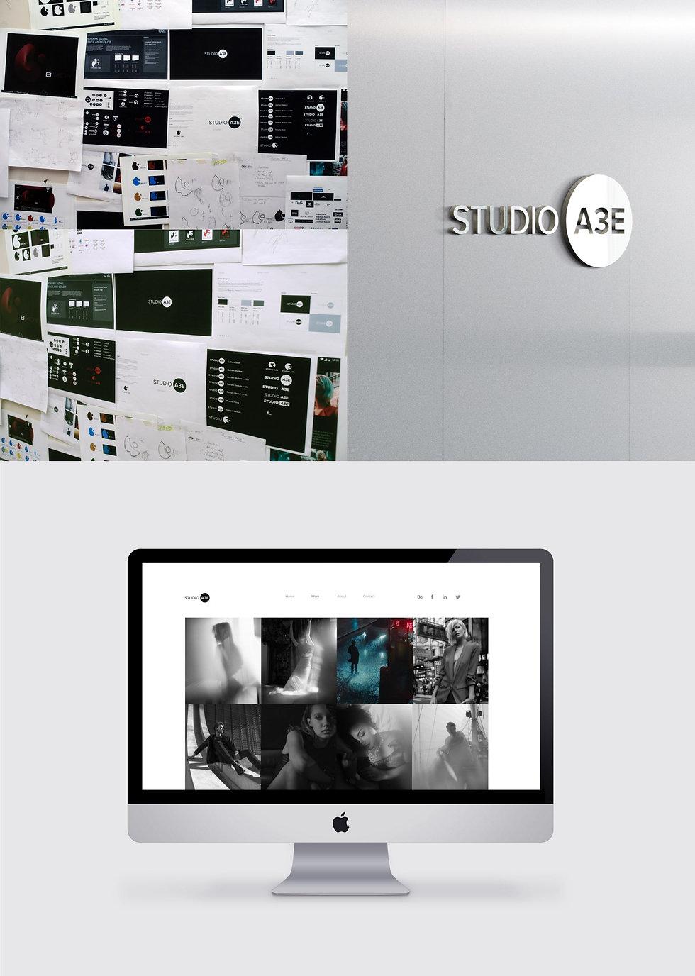 Studio A3E Panel B2.jpg